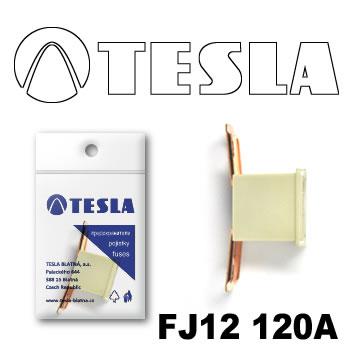 SIGURANTA TESLA FJ12 32V 120A