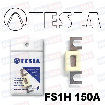 SIGURANTA TESLA FS1H 80V 150A