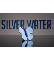 Odorizant Auto Fluturas Silver Water MTR 75228