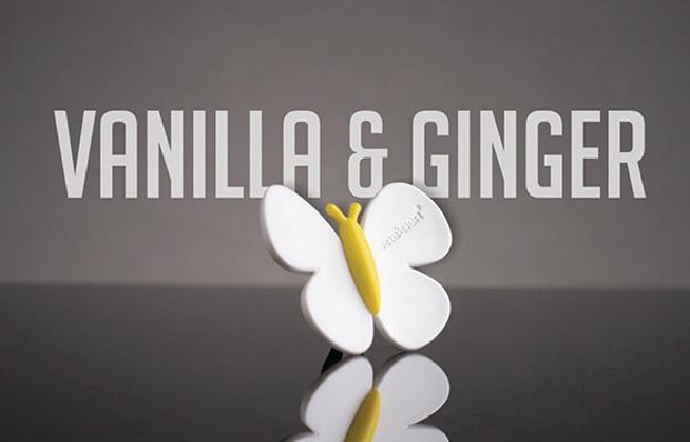 Odorizant Auto Fluturas Vanilla si Ginger MTR 75226