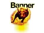 Baterie auto BANNER 595 04 STARTING BULL 12V 95AH